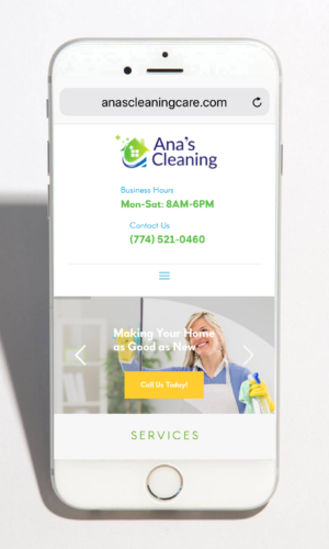 anas-cleaning-mob