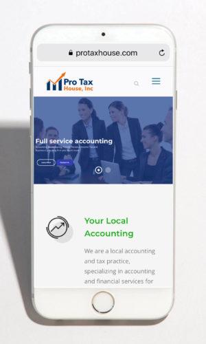 pro-tax-mob